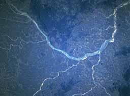 Mahanadi river satellite view