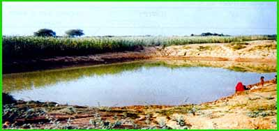 excavated pond